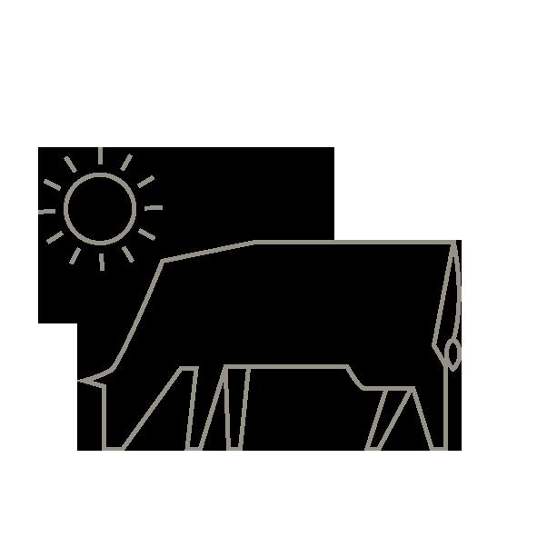 Ganadería en Cantabria - animales en libertad carne de pasto