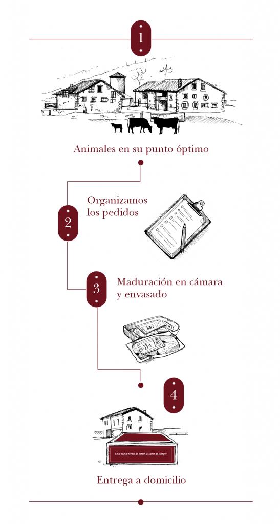 esquema de nuestro proceso de trabajo